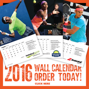 2016 12-Month Wall Calendar