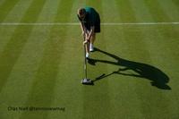 Morning At Wimbledon