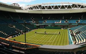 Raise the Curtain:  Wimbledon Men's Draw Preview